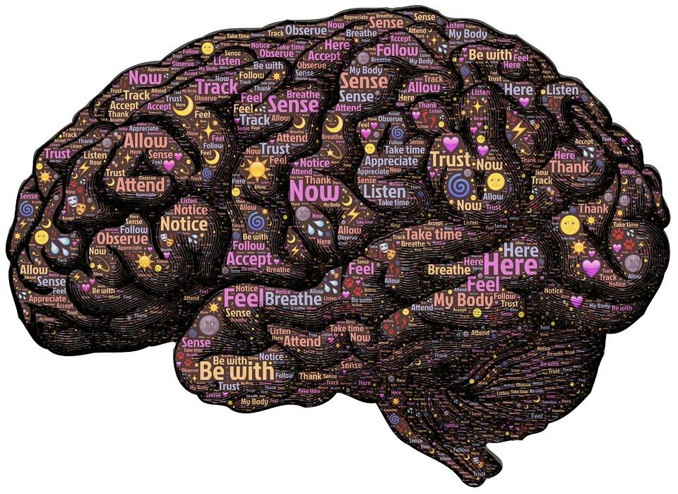 mente emozioni2